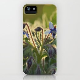 The Beauty of Weeds iPhone Case