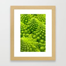 Macro Romanesco Broccoli Framed Art Print
