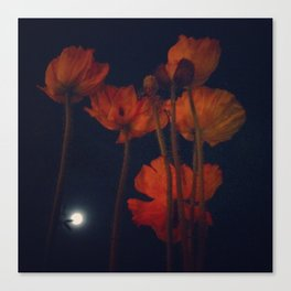 Moon and moonflowers Canvas Print
