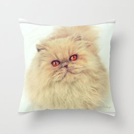 Who are you calling a big ball of fur?  Throw Pillow