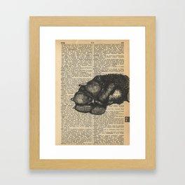 Critter Mitt Framed Art Print