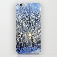 Shining Through iPhone & iPod Skin