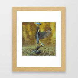 Kingfishin' (pt.1) IV Framed Art Print