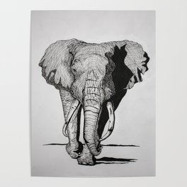Magnificent Elephant Poster