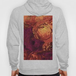 Sunset Glory Hoody