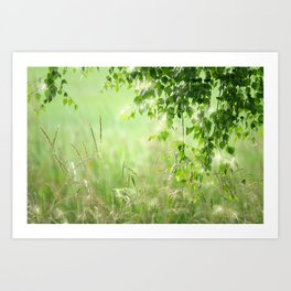 Birch leaves with Green Grass Art Print