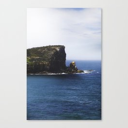 Avalon Beach Headland Canvas Print