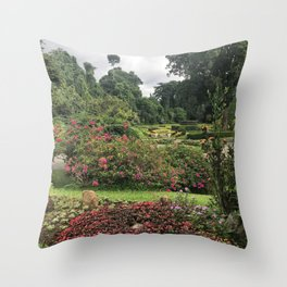Stormy Garden Throw Pillow