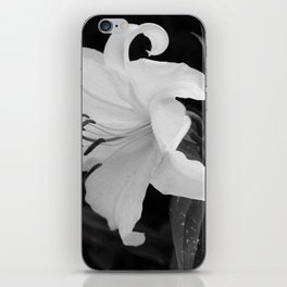 WHITE DHALIA iPhone Skin