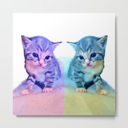 Cute Colorful Cat Couple Metal Print