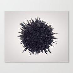 S1 Canvas Print