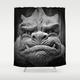 From A Dark Dream II Shower Curtain