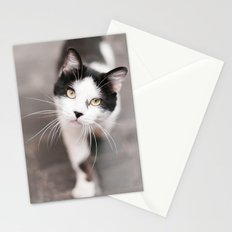 Friendly Black and White Cat Stationery Cards