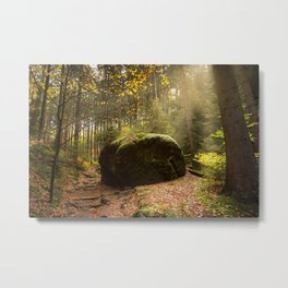 Large Boulder in Elbe Sandstone Mountains Metal Print