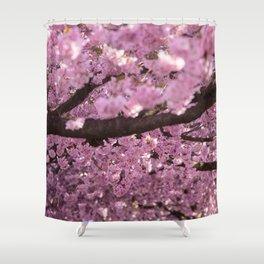 Cherry Blossom Tree Panorama Shower Curtain
