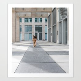 Modern Architecture and the German Shepard Art Print