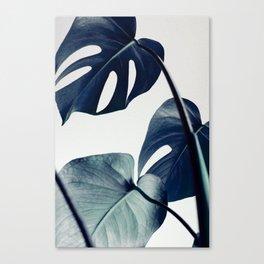 botanical vibes II Canvas Print