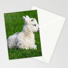 A Sleepy Newborn Lamb In A Field Stationery Cards