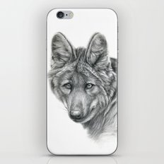 Maned Wolf G040 iPhone & iPod Skin