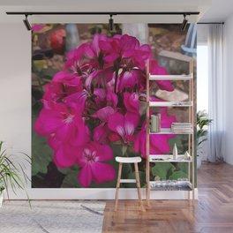 Pink Geranium Wall Mural