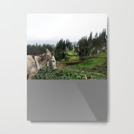 Cloudy Pastures in Ecuador Metal Print
