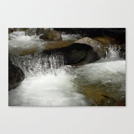 Icy Waters of Fall Creek at Vallecito Canvas Print