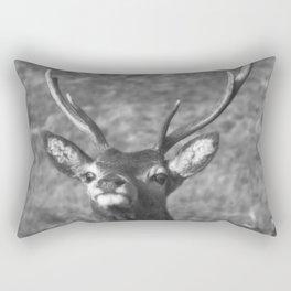 """""""You looking at me?' Ardnamurchan Deer, Highlands of Scotland Rectangular Pillow"""
