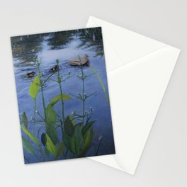 Gliding By Stationery Cards