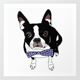 Boston Terrier with a tie Art Print