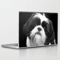 shih tzu Laptop & iPad Skins featuring Shih Tzu Dog by ritmo boxer designs