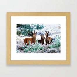 Unicorn Deer #society6 #decor #buyart Framed Art Print