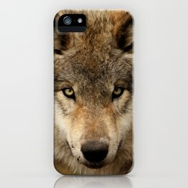 Undivided attention iPhone Case