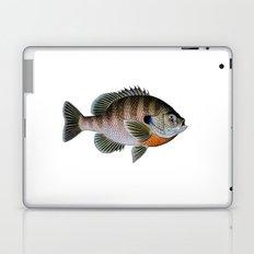 bluegill1 Laptop & iPad Skin