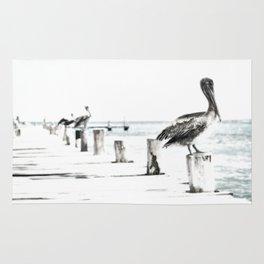 Pelican | Pelícano | The the long wait hunting Rug