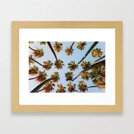 Palm trees overload Framed Art Print