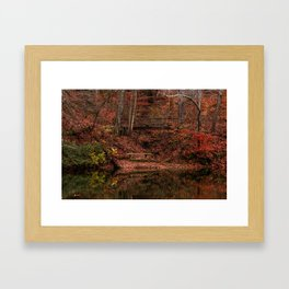The Bench and the Bridge Framed Art Print