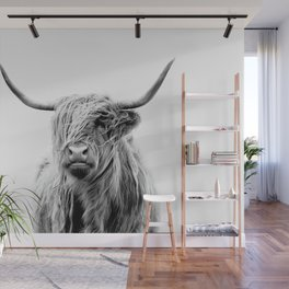 portrait of a highland cattle Wall Mural