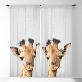 Baby Giraffe - Colorful Blackout Curtain