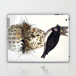 Chirp Laptop & iPad Skin