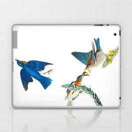 Blue Bird Vintage Illustration Laptop & iPad Skin