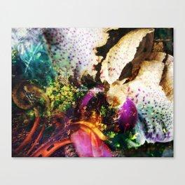 Metus Canvas Print