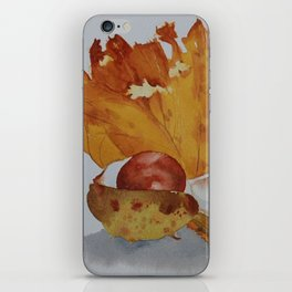 Autumn leaf and conker iPhone Skin