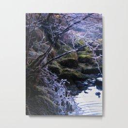 Frosting Metal Print