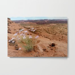 Grand Staircase Escalante National Monument Metal Print