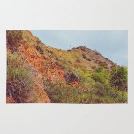 Desert Trail Rug