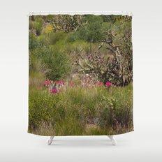 Painted Desert - VI Shower Curtain