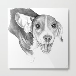 A Story To Tell :: A Beagle Puppy Metal Print