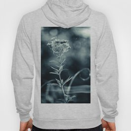Old Time Blues Hoody