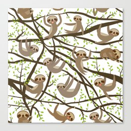 funny and cute smiling Three-toed sloth on green branch tree creeper Canvas Print