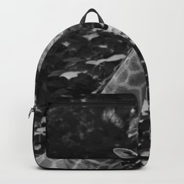 What's on Backpack